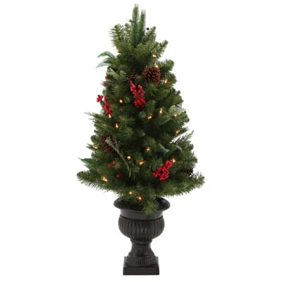Martha Stewart Living 3 Ft Winslow Fir Potted Artificial  - Christmas Trees In Home Depot